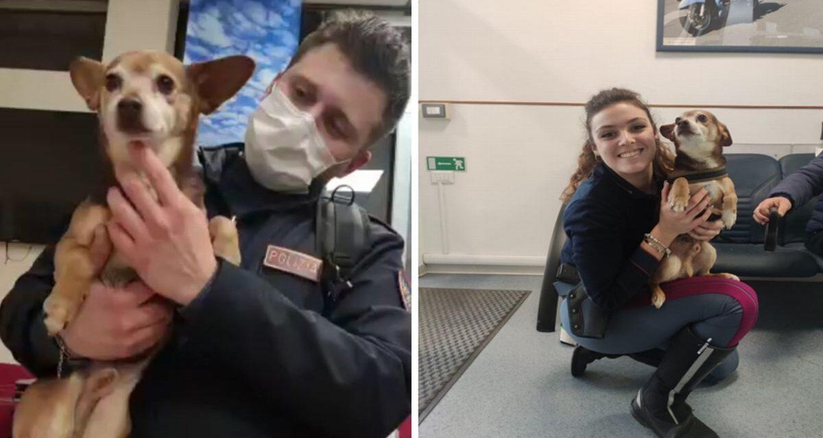Ruba un'auto con questo cagnolino a bordo, salvato dalla Polstrada Alessandria
