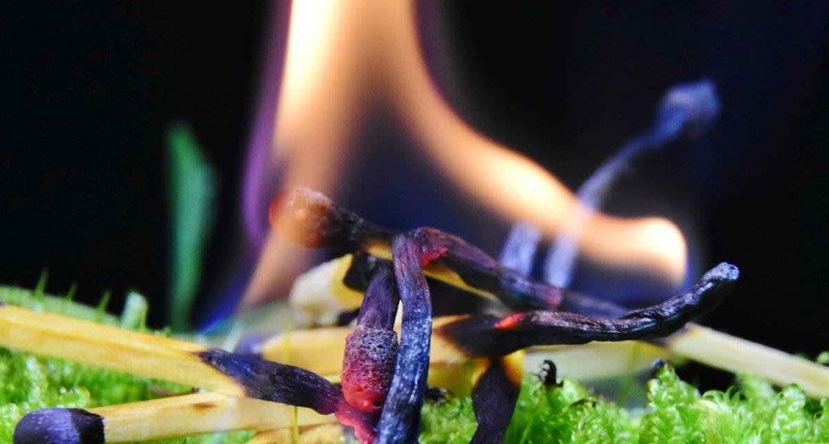 Da oggi scatta l'attenzione agli incendi boschivi (anche in collina e non solo)