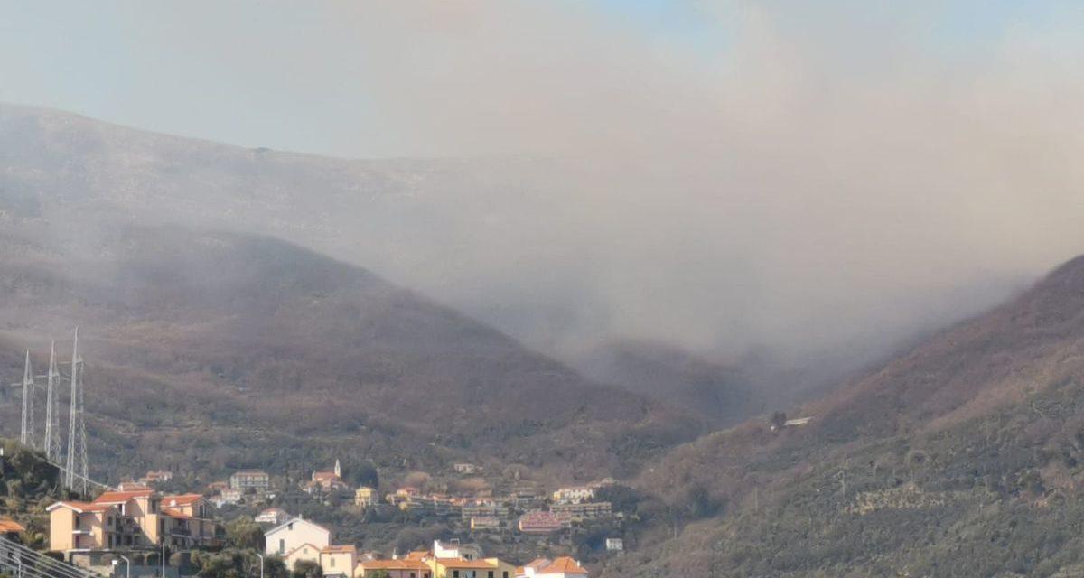 Maxi incendio di bosco nel Golfo Dianese, il secondo in breve tempo. Le immagini