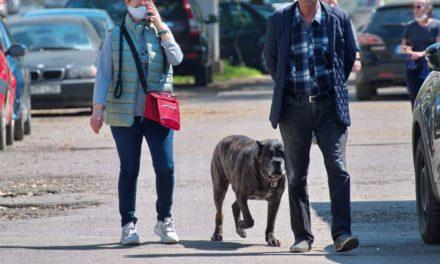 Il comportamento vergognoso di certi padroni di cani che a Tortona ne combinano di tutti i colori
