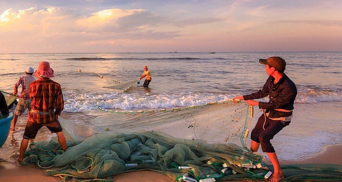 Pesca, con la pandemia le imprese liguri hanno già subito perdite di fatturato dal 25 al 55%
