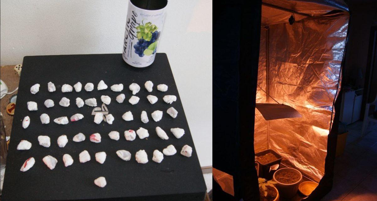 Giovane di Novi Ligure coltiva droga nella camera da letto, ma i Carabinieri lo scoprono