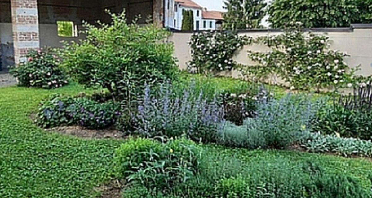 Acquarellando nel giardino dell'eremita a Pontestura con Maria Elena Ferrari