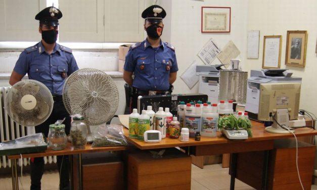 I Carabinieri di Tortona controllano i luoghi frequentati dai giovani e trovano uno spacciatore