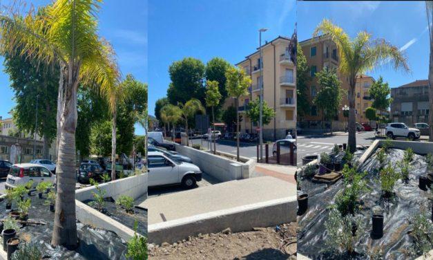 A Diano Marina completata la piantumazione relativa al primo lotto di parcheggi lungo l'ex sedime ferroviario