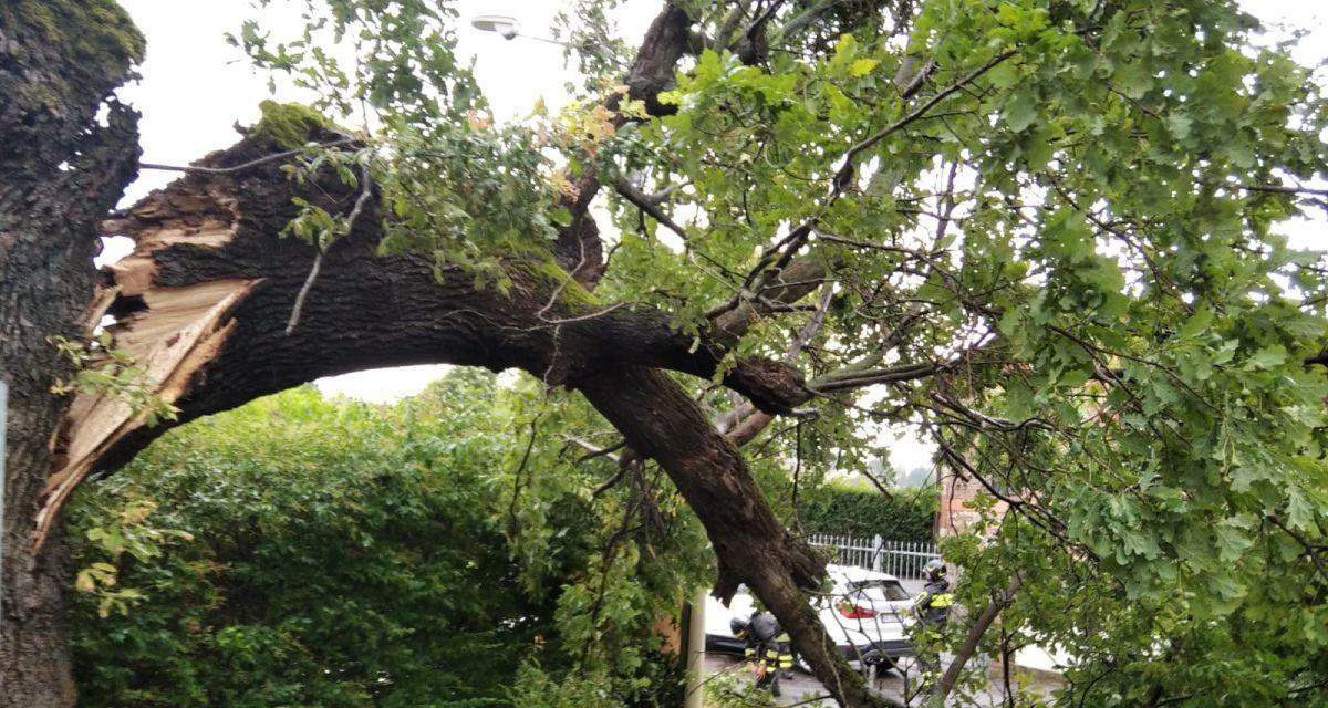 Tanti interventi dei Vigili del Fuoco di Tortona per il vento