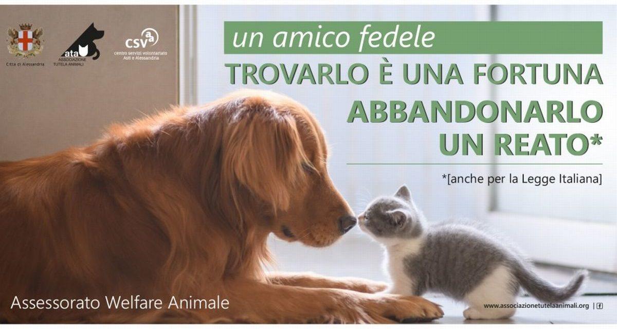 Il Comune di Alessandria fa partire una campagna contro l'abbandono degli animali
