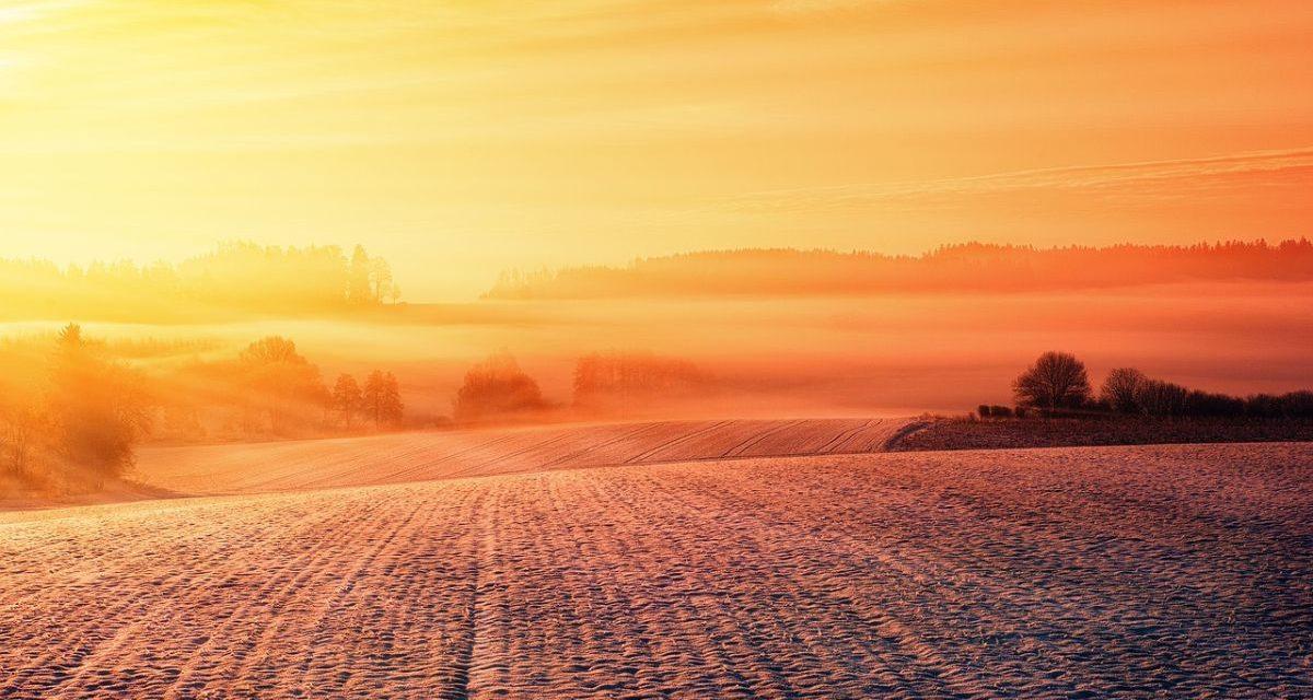 Incendi e Cambiamento Climatico: quali saranno gli impatti sul futuro