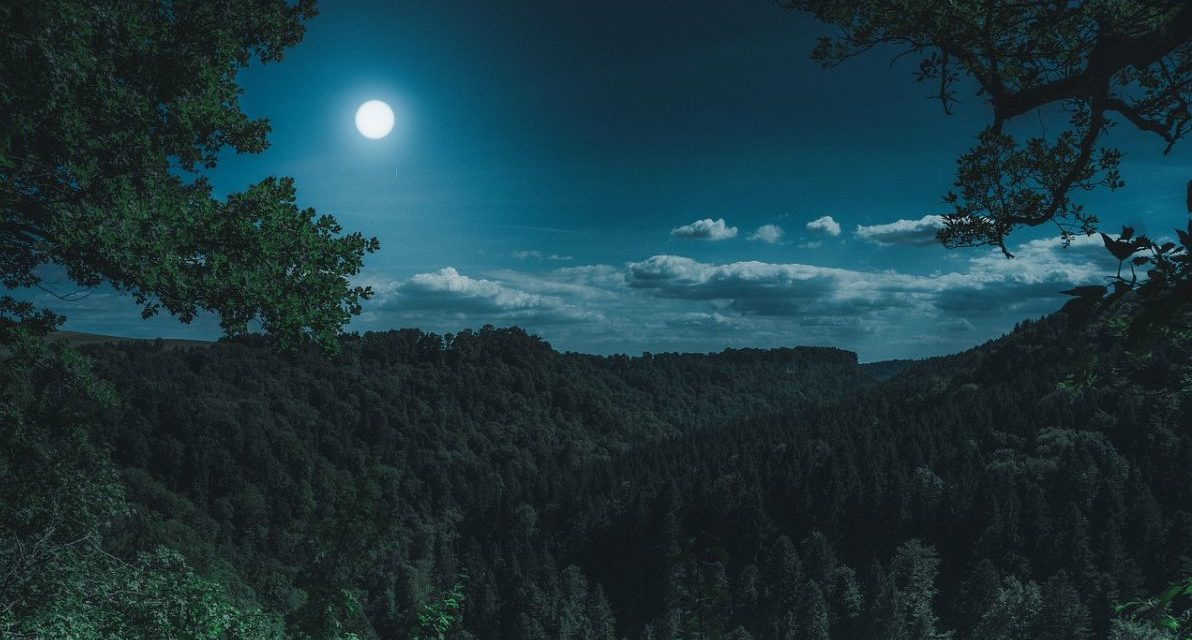 Sabato a Isola Sant'Antonio escursione naturalistica notturna, come partecipare