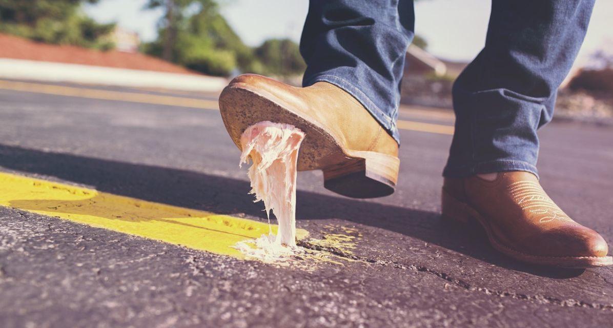 Domenica a Tortona i volontari puliscono la città con Gestione Ambiente